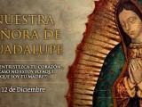 SEMANA ESPECIAL DEDICADA A NUESTRA SEÑORA DE GUADALUPE (III)