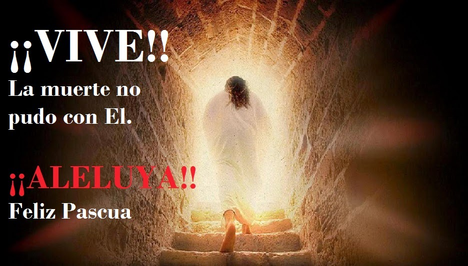 Homilía Vigilia Pascual y Domingo de Resurrección - En