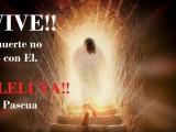 Homilía Vigilia Pascual y Domingo de Resurrección