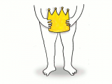 El rey desnudo